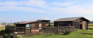メイちゃん農場