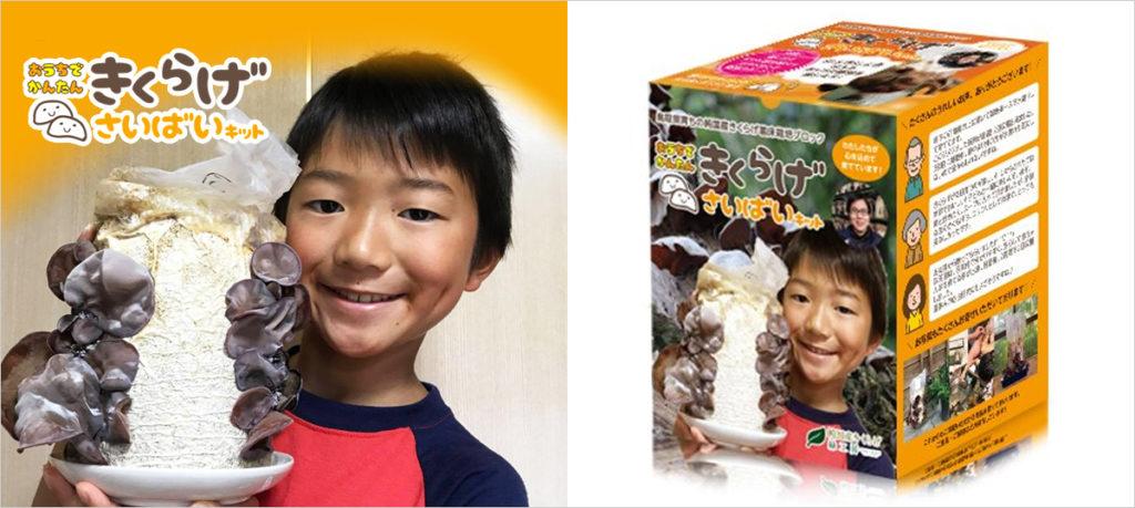 ~家族の健康を応援したい!みんなで育ててみんなで食べよう~ ビタミンDが豊富なきくらげをおうちで育てる。 鳥取県純国産きくらげの栽培キットVer.3を発売開始